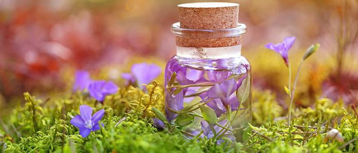 purple-magic-potion-herbal-infusions-bottle-liquid-glass-forest
